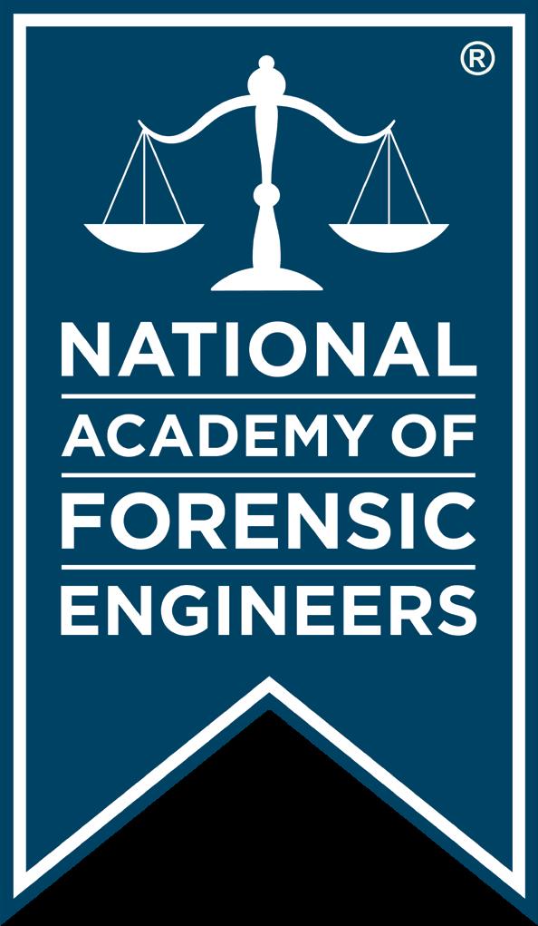 NAFE Banner Logo